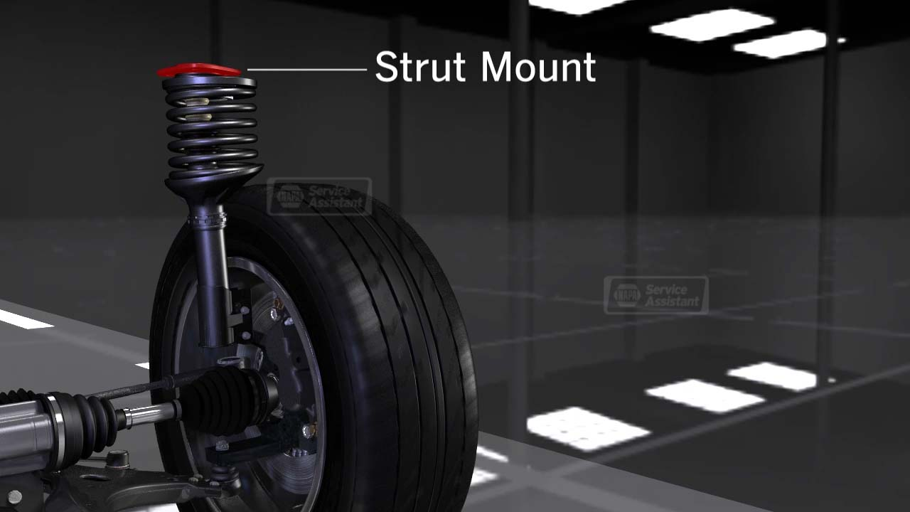 Topic: Shocks and Struts Animation