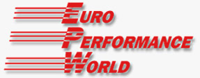 Your Well Trained Technician at Euro Performance World